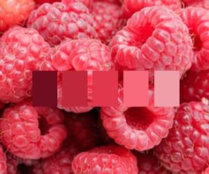 fruit, raspberry, and food image