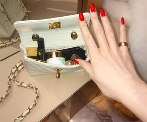 bag, luxury, and nails image