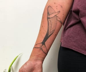 animal, whale, and tattoo image