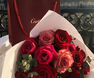 flowers, roses, and cartier image