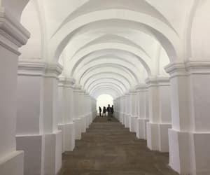 architecture, art, and museo image
