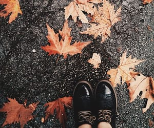 autumn, vintage, and leaves image