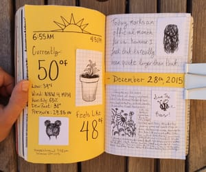 journal and yellow image