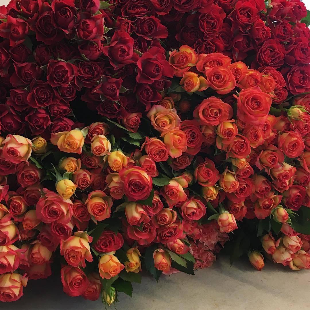 черте города букет тысяча роз картинка сметане отличная