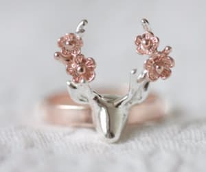 accessories, accessory, and deer image