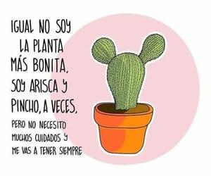 Image by Vanne Salinas Salinas