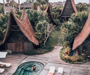 bali, pool, and summer image