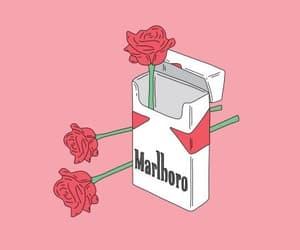 rose, marlboro, and cigarette image