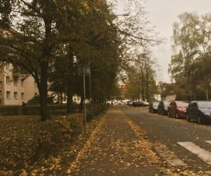 autumn, cars, and orange image
