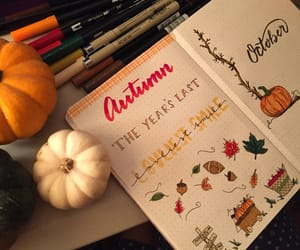 autumn, orange, and fall image