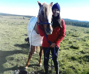 countryside, farm, and field image