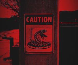 bad, snake, and danger image