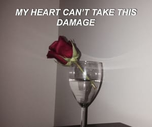 damage, flowers, and quotes image