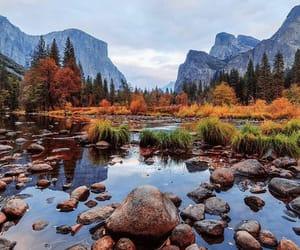 nature, view, and yosemite image