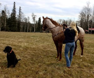 autumn, canada, and Cowgirl image
