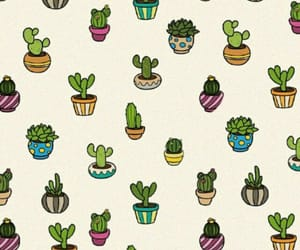 cactus, random, and wallpaper image