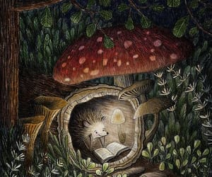 forest, reading, and hedgehog image