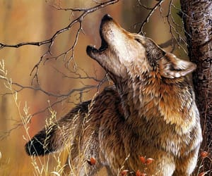 wolf, animal, and howling image