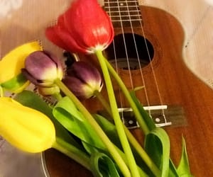 flower, music, and tulip image