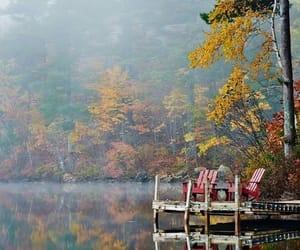 autumn, naturaleza, and paisaje image