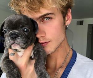 cute, boy, and dog image