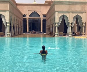 longhair, piscine, and luxe image