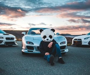 car, panda, and photograph image