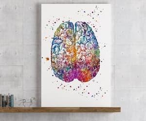 anatomy, etsy, and gift image