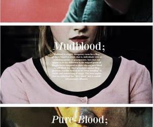 potter, pure blood, and muggle image