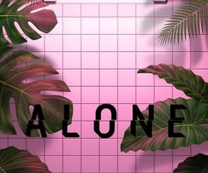 aesthetic, pink, and relationships image
