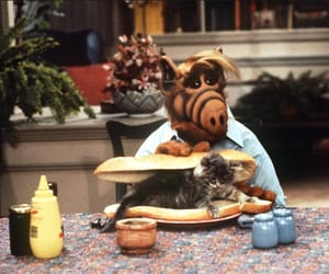 alf and 80's image