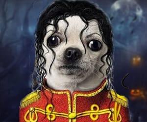 michael jackson and dog image