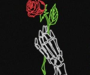 flor, flowers, and fondo image