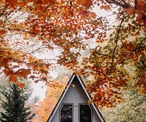 autumn, cabin, and fall image
