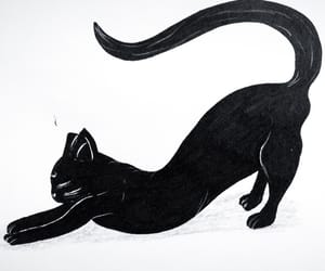 art, black cat, and drawing image