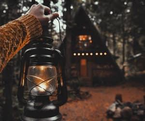 autumn, fall, and light image
