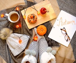 autumn, blogger, and fall image