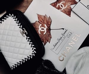 chanel, autumn, and bag image