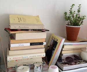 book, plant, and books image
