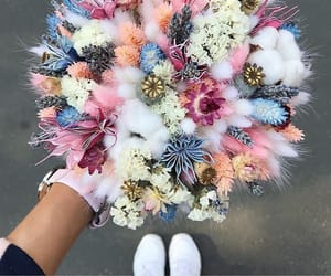 flowers, beautiful, and pink image