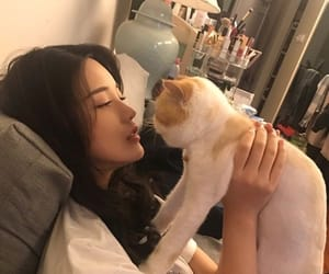 ulzzang, cat, and asian girl image