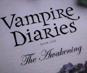 aesthetic, article, and tvd image