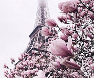 paris, france, and nature image