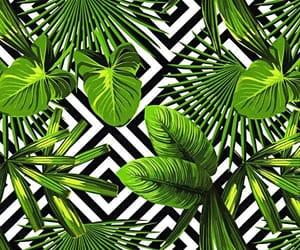 art, background, and blackandwhite image