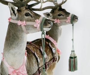 christmas, reindeer, and animal image