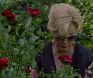 jessica lange, american horror story, and constance langdon image