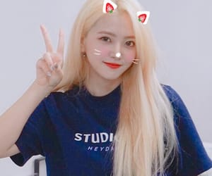 blonde, kim yeri, and kitten image
