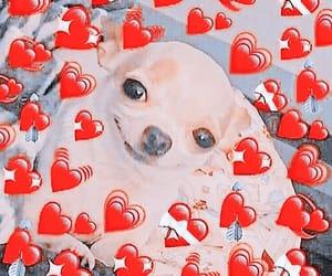 meme, mood, and corazón image