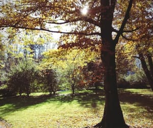colorful, fall, and ljubljana image