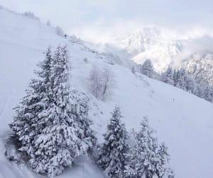 fields, Skiing, and ski image